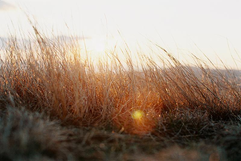 sunset-by-Sonya-Khegay-04