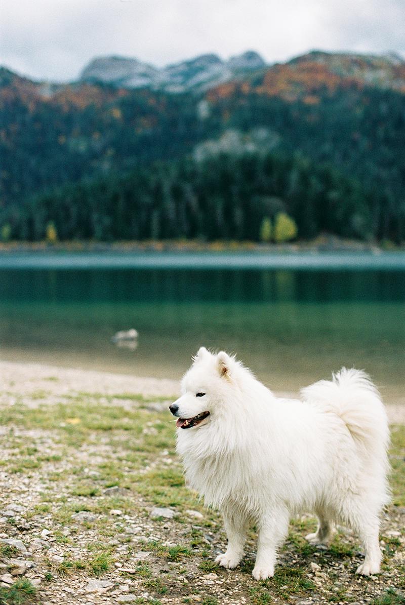 Autumn-North-Montenegro-by-Sonya-Khegay-03